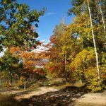 Park Narodowy Góry Kościuszko i inne parki